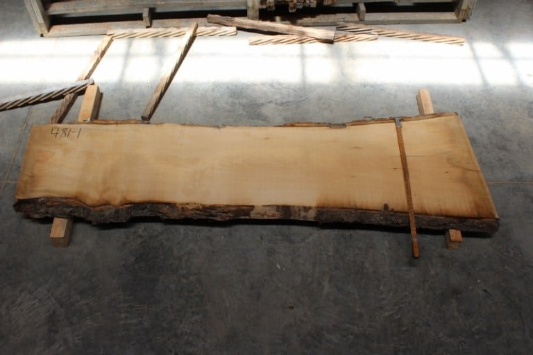slab 481-1, rough size: 2″ x 21″-27″ x 8′ $550