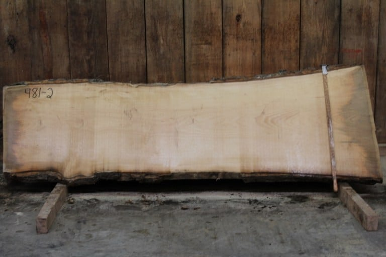 slab 481-2, rough size: 2″ x 25″-31″ x 8′ $575