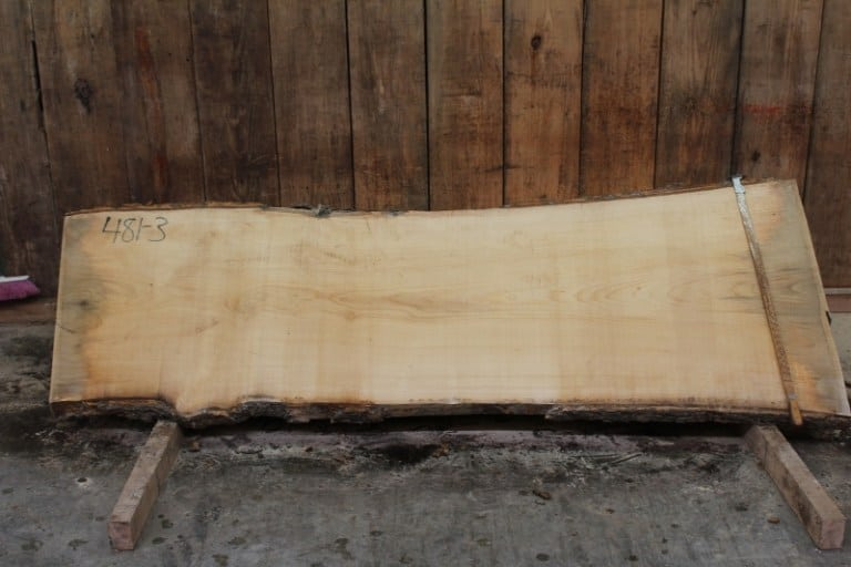 slab 481-3, rough size: 2″ x 28″-32″ x 8′ $700