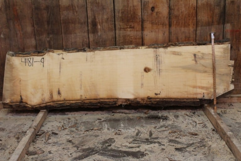 slab 481-9, rough size: 2″ x 20″-24″ x 8′ $550
