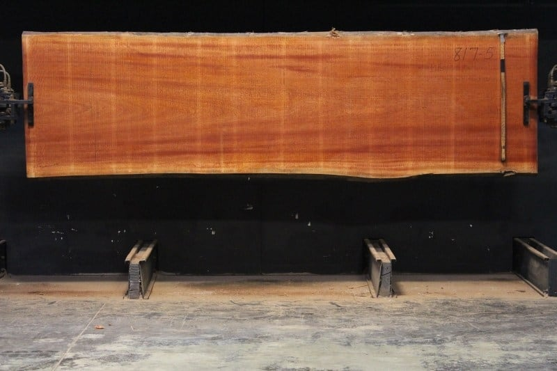 sipo slab 817-5, 2″ x 39″-41″ (avg. 39″) x 12′ $1800 SALE PENDING 21-5028