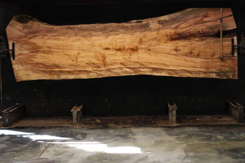 Spalted Maple Slab 1024-6, Narrow Face, surfaced size  2 3/8″ x 37-51″ avg. 43″ x  13′ $2100  SALE PENDING PO 21-8007 1-31-21