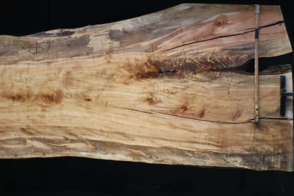 Spalted Maple Slab 1024-6, Narrow Face, Right Side  SALE PENDING PO 21-8007 1-31-21