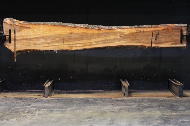 Elm Slab 874-1, rough size 2.25″ x 14-26″ avg. 19″ x  10′ $595