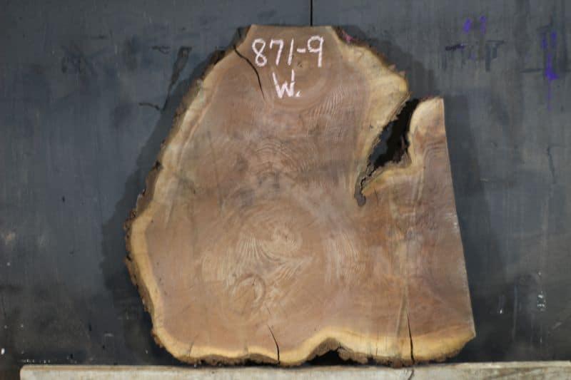 Live edge wood slice 871-9