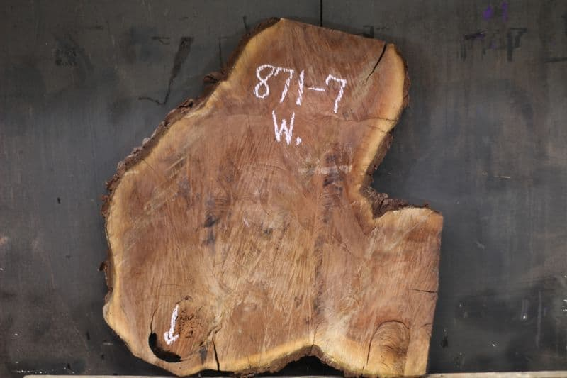 walnut wood round 871-7