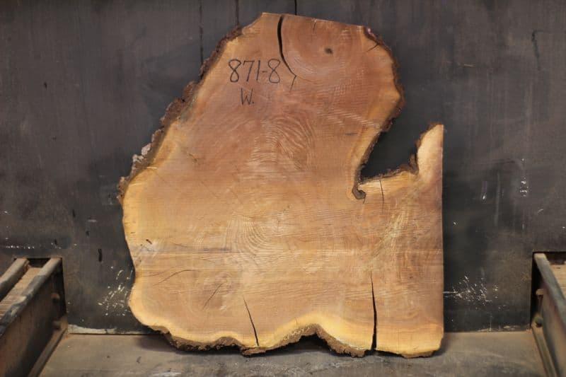 walnut wood round 871-8