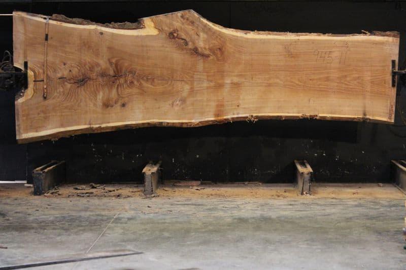 Siberian Elm Slab 945-11, rough size 2.5″ x 35-55″ avg. 40″ x 14′ $2250.