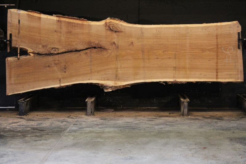 Siberian Elm Slab 945-6, rough size 2.5″ x 41-61″ avg. 43″ x 14′ $2250  * Sale pending TR #21-3042