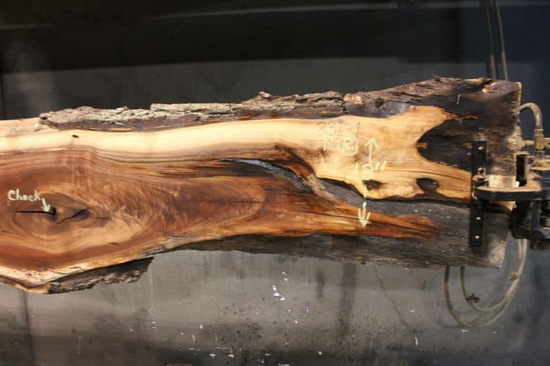surfaced walnut slab 831-1 narrow face, right side closeup
