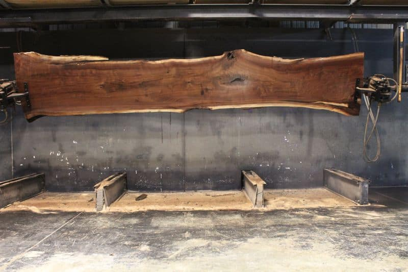 surfaced walnut slab 831-2, wide face