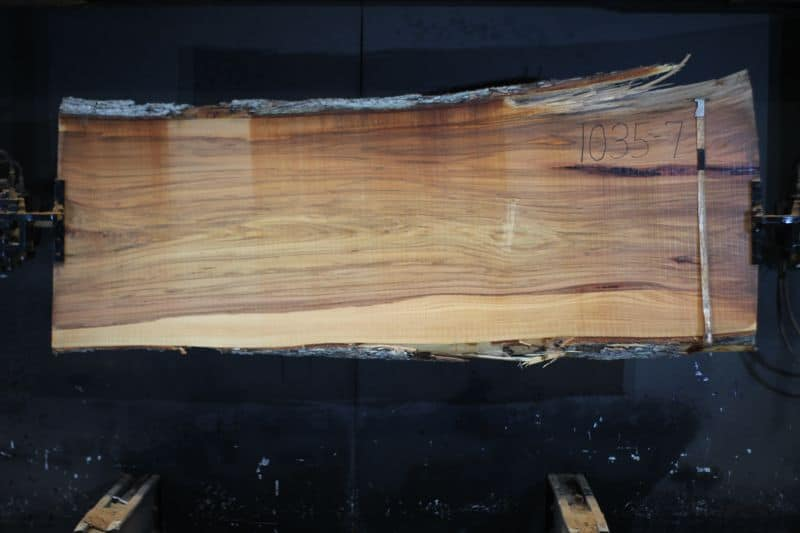 Red Elm Slab 1035-7, rough size 2.5″ x 32-34″ avg. 33″ x  8′ $1225. SALE PENDING 21-5024