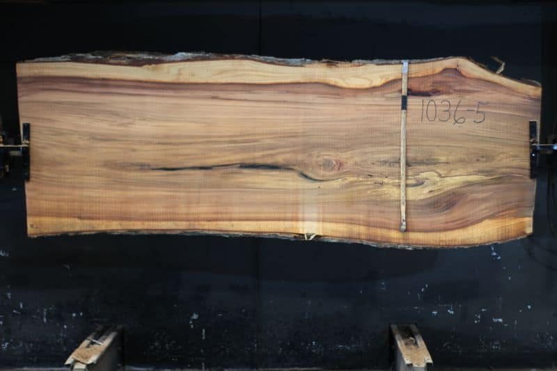 Red Elm Slab 1036-5, rough size 2.25″ x 34-40″ avg. 36″ x  9′ $1150. SALE PENDING 21-5024