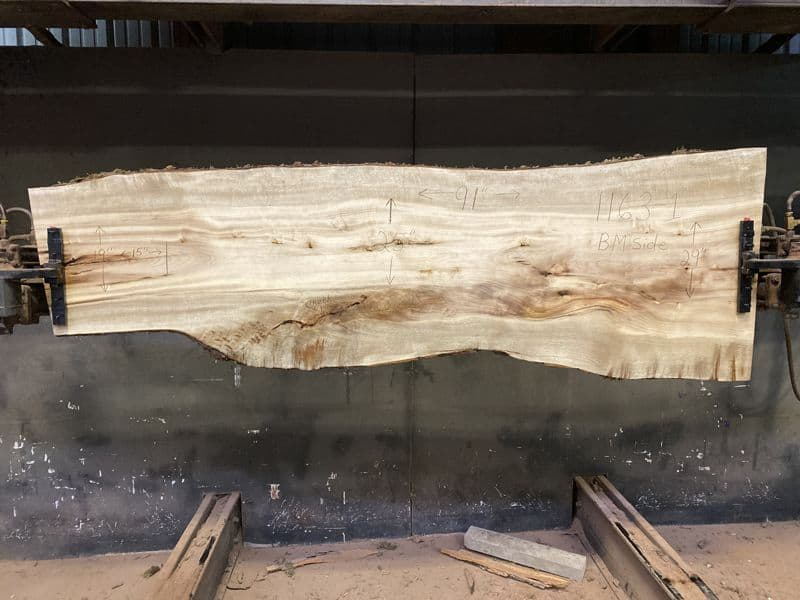 Myrtlewood Slab 1163-1, Surfaced size 1.75″ x 19-30″ avg. 25″ x  91″
