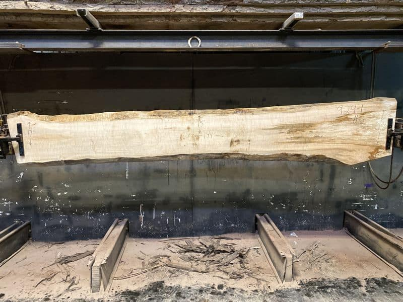 Curly Maple Slab 929-1, surfaced size 1 5/8″ x 14-24″ avg. 15″ x  12′ $875