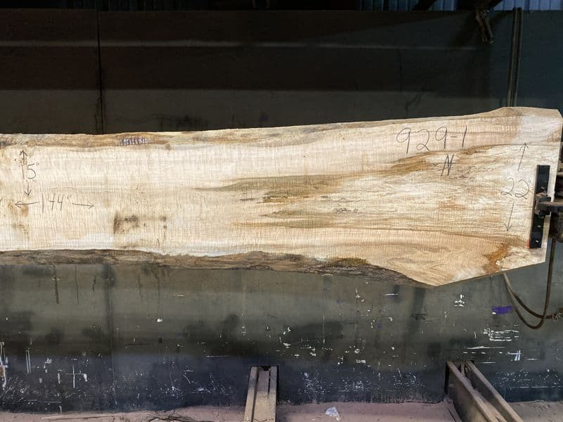 Curly Maple Slab 929-1, Narrower Face,  Right Side