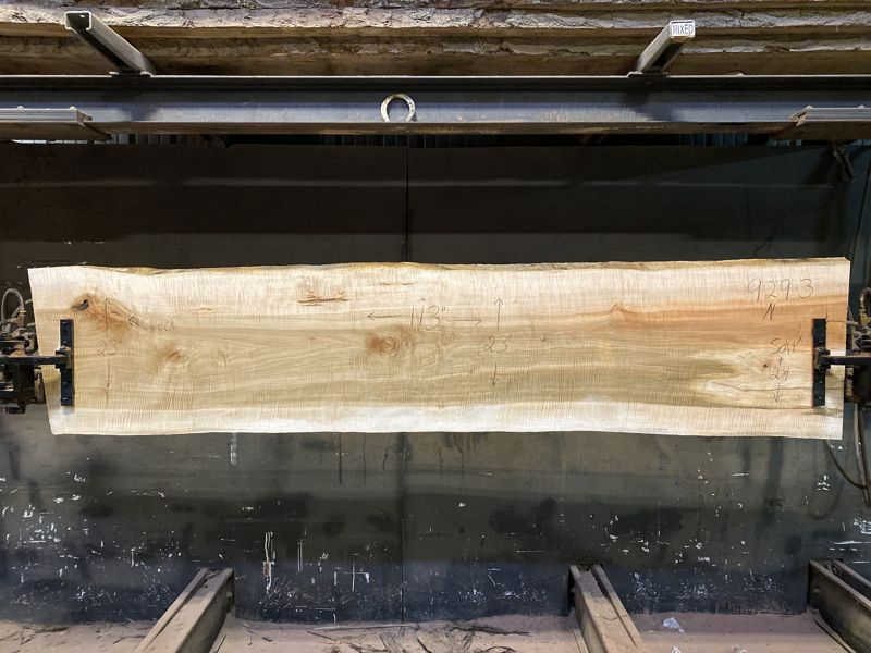 Curly Maple Slab 929-3, surfaced size 1 5/8″ x 23-30″ avg. 25″ x  9′ $1050