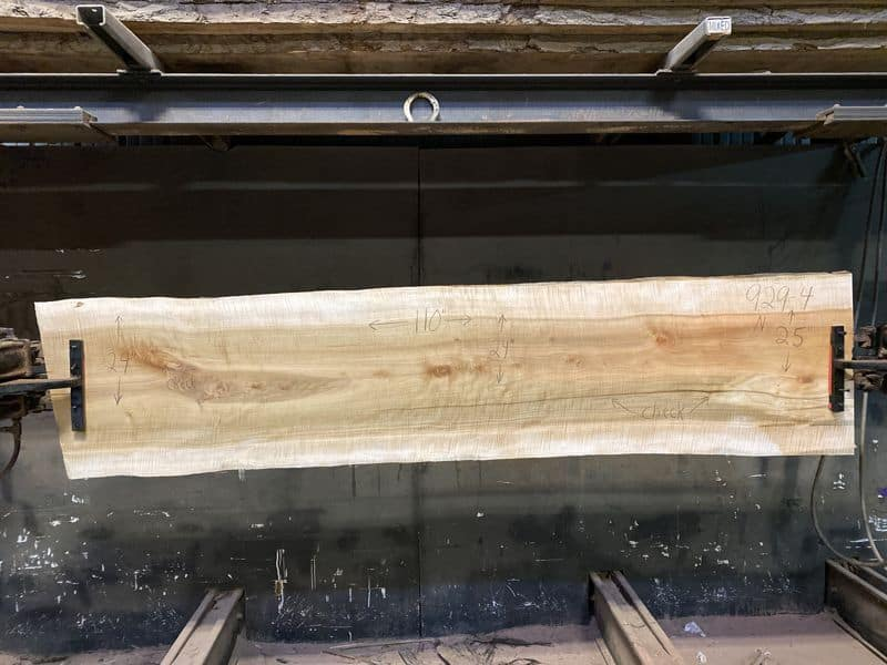 Curly Maple Slab 929-4, surfaced size 1 5/8″ x 24-32″ avg. 26″ x  9′ $1050