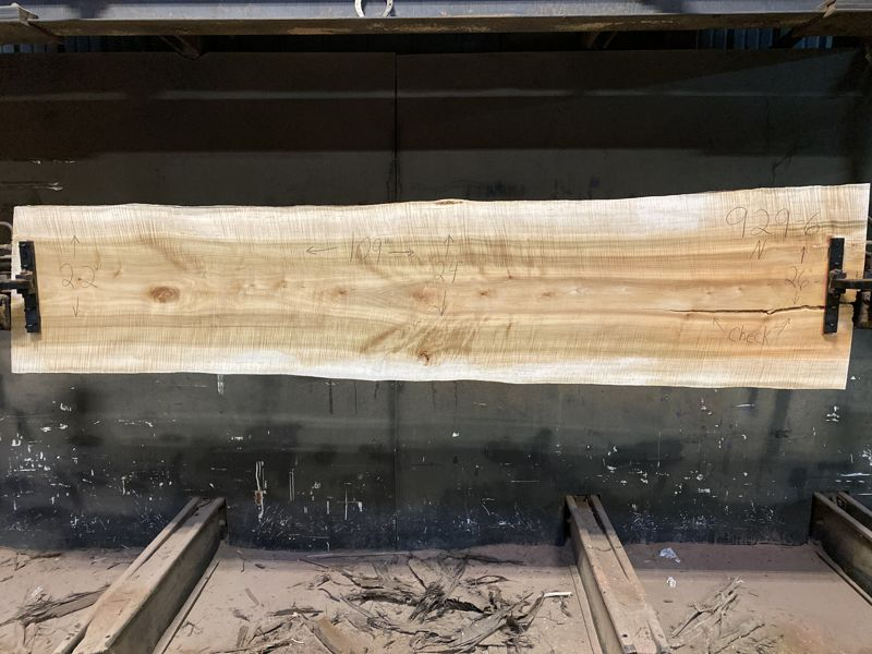 Curly Maple Slab 929-6, surfaced size 1 5/8″ x 22-31″ avg. 25″ x  9′ $1050