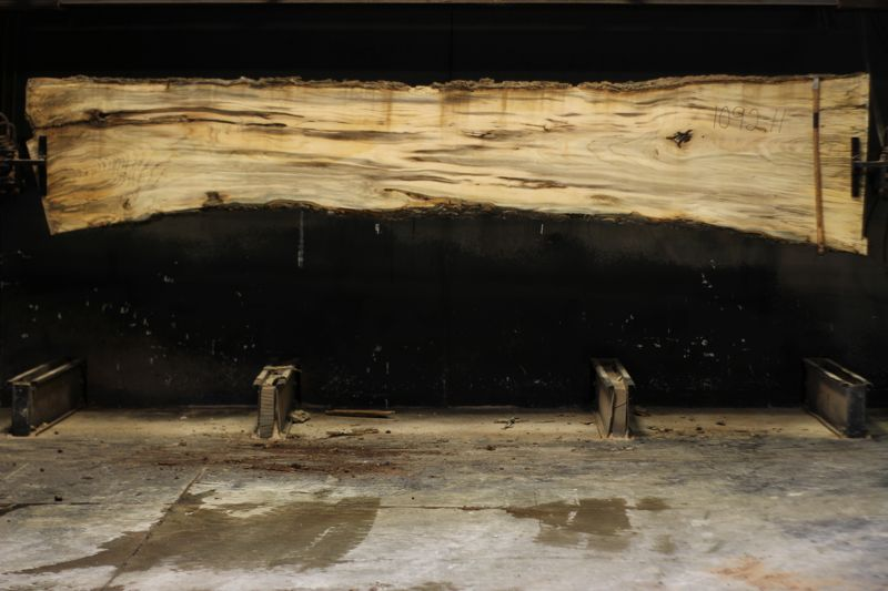 spalted hackberry slab 1092-11 rough size 2″ x 21-34″ avg. 26″ x 14′ $850