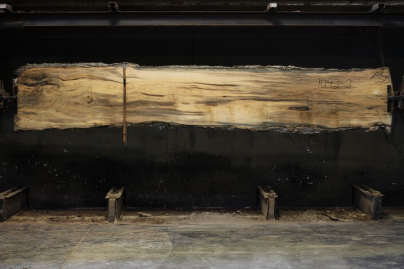 spalted hackberry slab 1092-2 rough size 2″ x 24-27″ avg. 25″ x 14′ $800