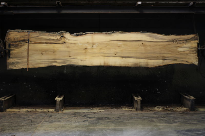 spalted hackberry slab 1092-4 rough size 2″ x 24-33″ avg. 29″ x 14′ $875