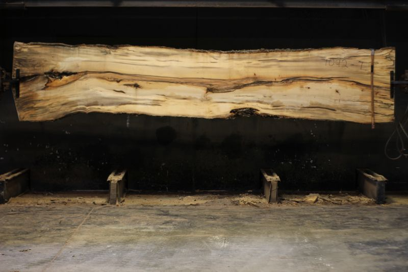 spalted hackberry slab 1092-7rough size 2″ x 24-33″ avg. 29″ x 14′ $950