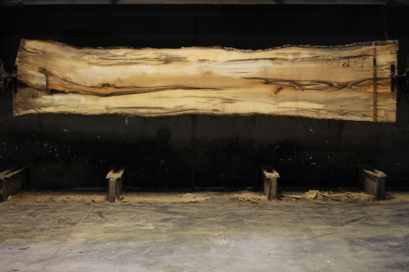 spalted hackberry slab 1092-9 rough size 2″ x 27-34″ avg. 30″ x 14′ $950