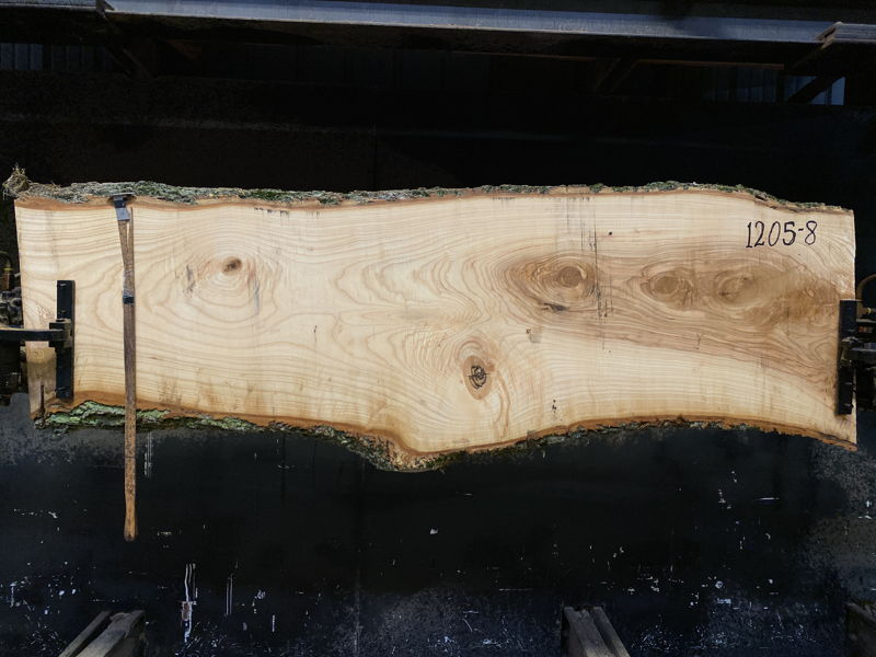 ash slab 1205-8 rough size 2.5″ x 18-26″ avg. 22″ x 7′ $625