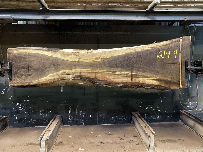 curly walnut slab 1219-9 rough size 2.5″ x 15-36″ avg. 25″ x 10′ $1500