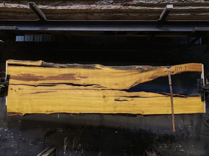 osage orange slab 1199-3 rough size 2.5″ x 22-27″ avg. 25″ x 9′ $575