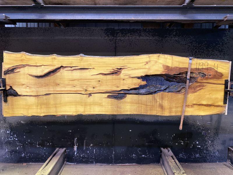 osage orange slab 1199-4 rough size 2.5″ x 27-31″ avg. 29″ x 9′ $650