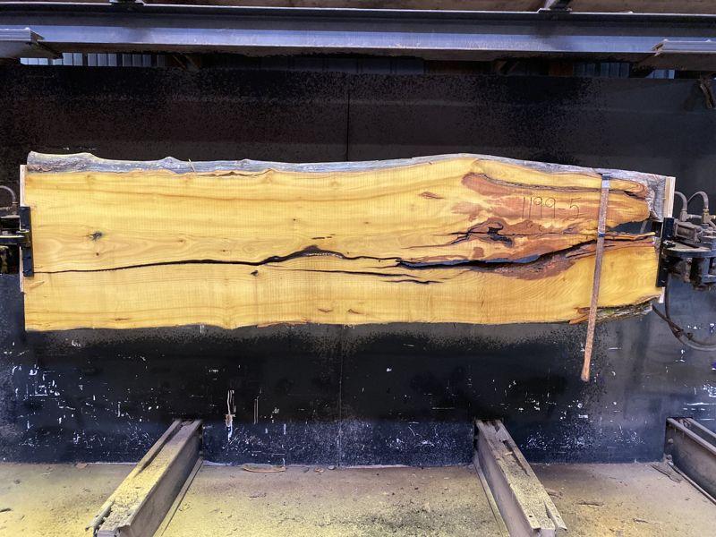 osage orange slab 1199-5 rough size 2.5″ x 22-28″ avg. 26″ x 9′ $650