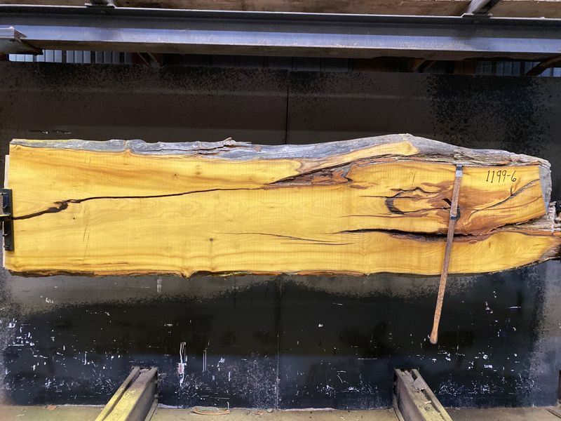 osage orange slab 1199-6 rough size 2.5″ x 20-25″ avg. 23″ x 9′ $550