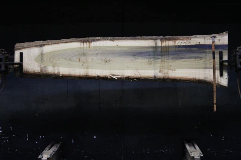 Poplar slab 892-8 rough size 2″ x 11-21″ avg. 217″ x 8′ $400