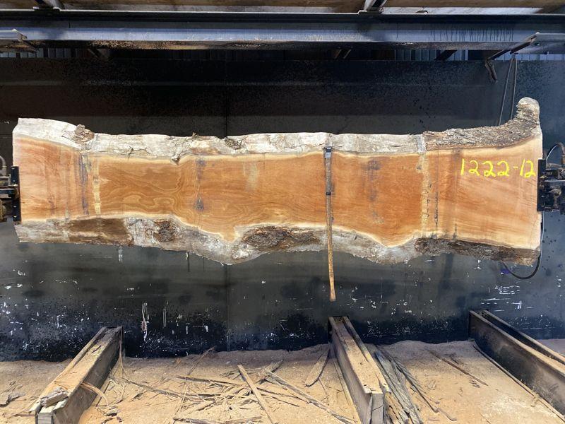 sycamore slab 1222-12 rough size 2.5″ x 14-24″ avg. 20″ x 10′ $500
